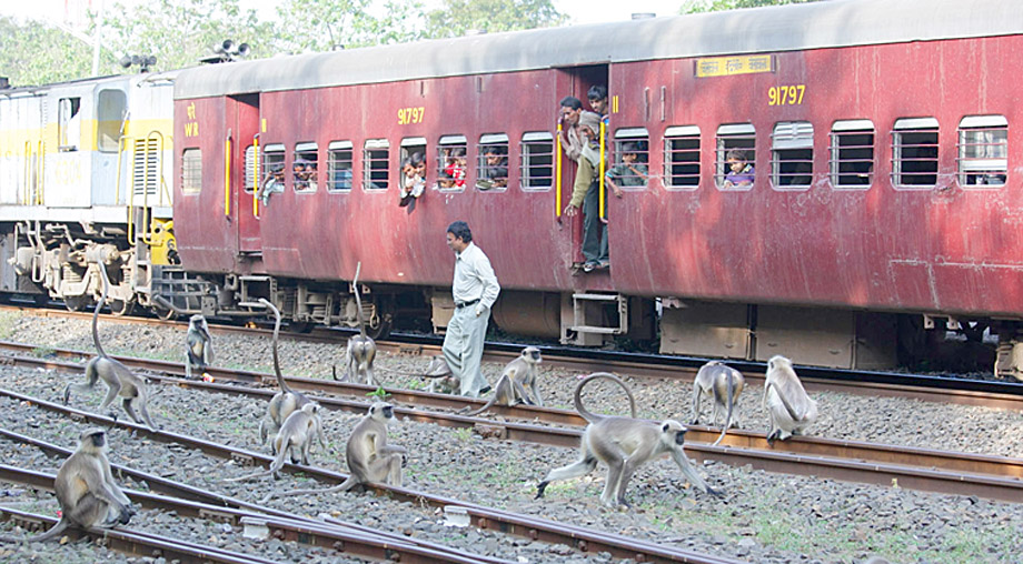 28-Langur train station